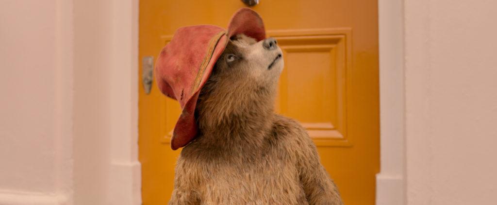 Paddington è un orsetto volenteroso.