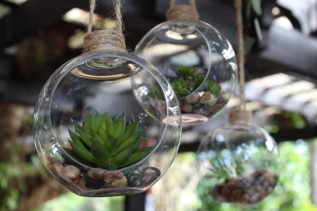 Idea per la bomboniera con le piante grasse.