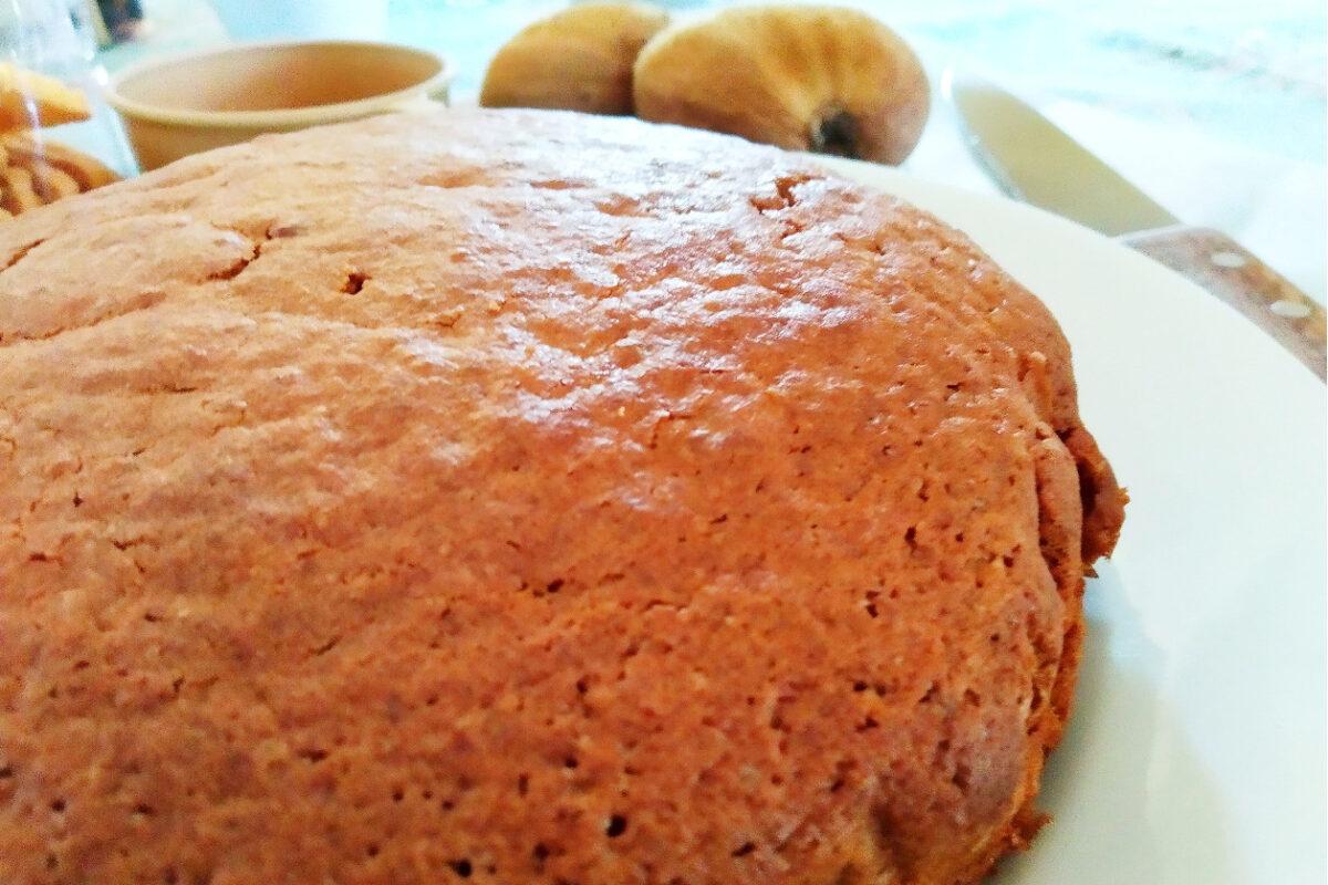 torta kiwi e cioccolato