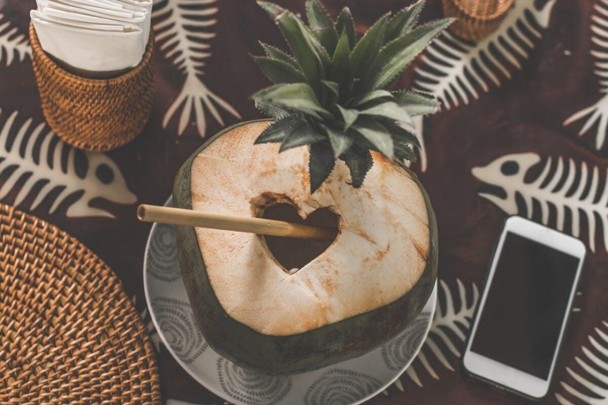Come riciclare gusci di noce di cocco in modo creativo