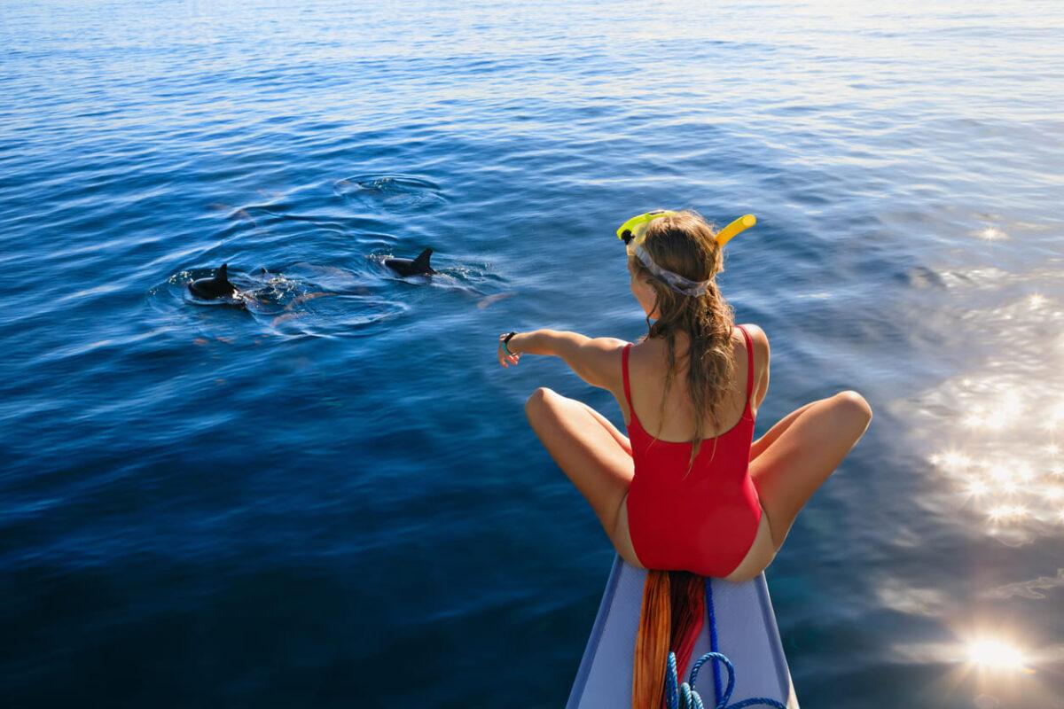Dove vedere il delfino rosa in libertà