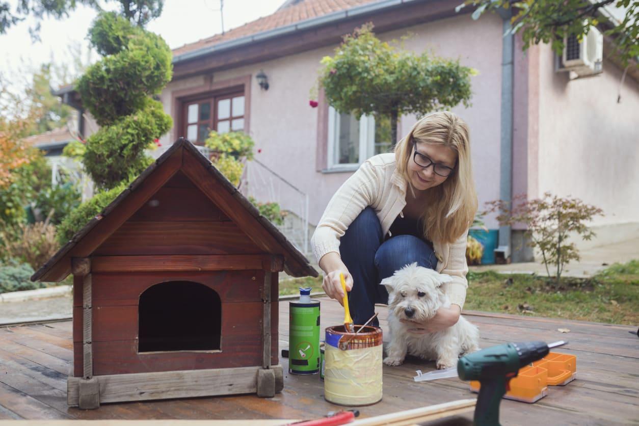 Come scegliere la cuccia del cane per il giardino