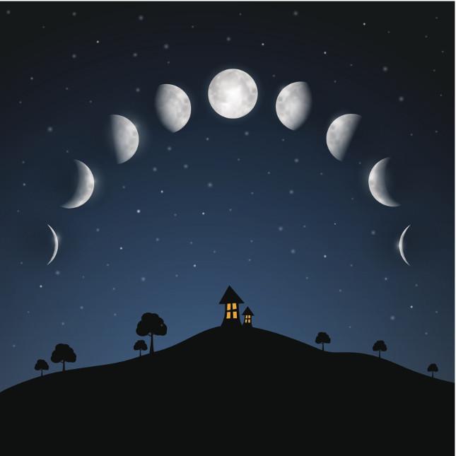 Le fasi lunari vanno dal novilunio alla luna piena fino a tornare al novilunio passando per luna crescente e calante